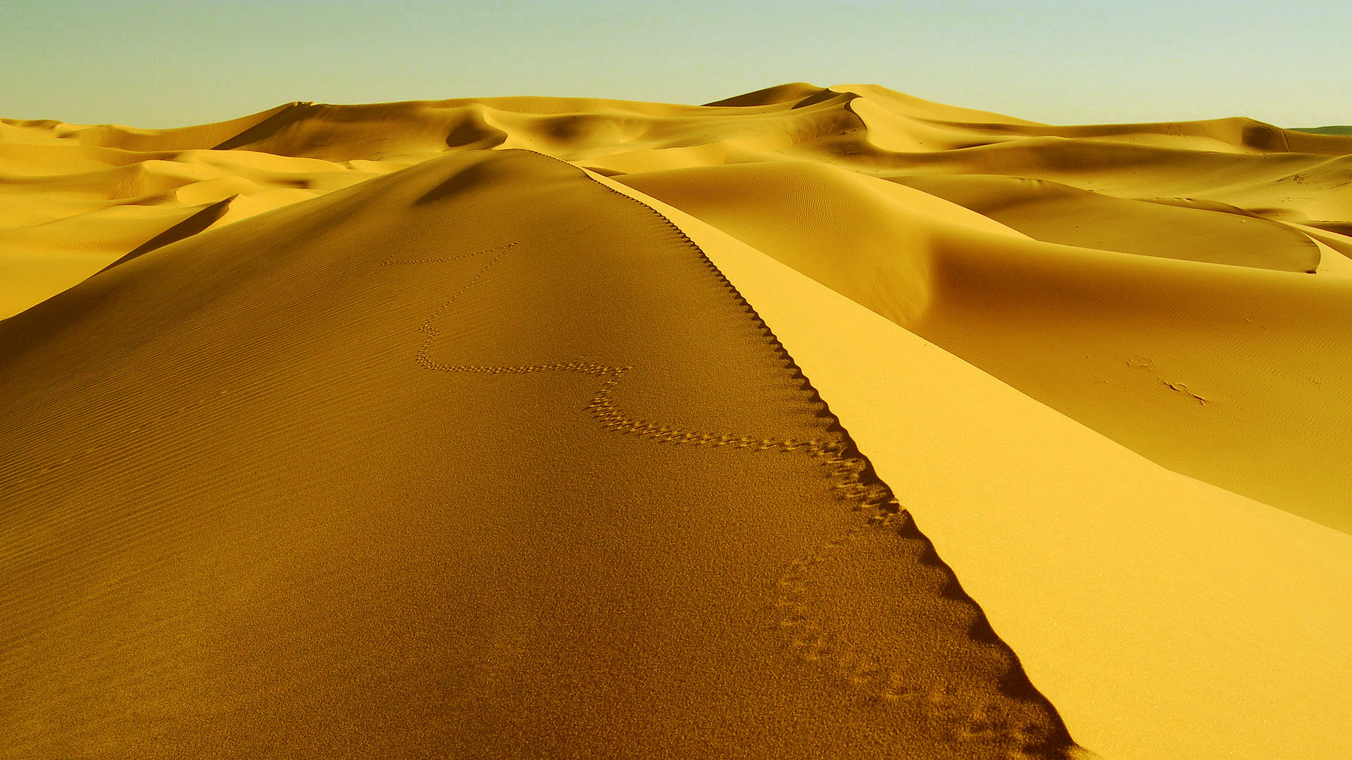 sahara_desert_dunes_wallpaper_hd-HD1-1